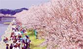 http://www.city.otake.hiroshima.jp/miryoku/sightseeing/